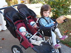 Best Triple Stroller – Pleiades Bee