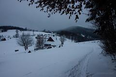 20100106-IMG_6115.jpg (Rafal Kubik) Tags: winter snow mountains forest landscape beskidy beskidzywiecki