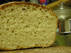 English muffin bread (the crumb)