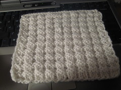 Double Bump Dishcloth Sample
