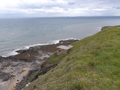 Above Macduff's Cave (Brian Cairns) Tags: eliechainwalk earlsferry elie fifecoastalpath