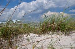 House In The Seaweeds (stevem19) Tags: coastal baldheadisland nccoast sand seagrass