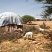 Somalia_ADRA_June2017-33