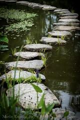 Der Weg ist das Ziel - The route is the goal (Martin Kukielka) Tags: pfad steine wasser weg stones water way