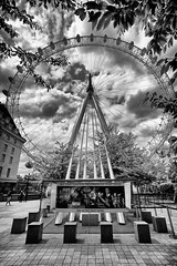 The London Eye (MKHardyPhotography) Tags: mkhardy london londoneye street streetphotography blackandwhite distagont3518