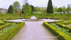 20170412_153152_Fotor (Bernsteindrache7) Tags: water wasser spring sky flora fauna flower garden bloom blossom blume tree green handy heaven himmel outdoor park landscape