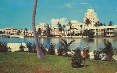 ** Miami Beach (Fla) USA ** - 5 (Impatience_1 (peu...ou moins présente...)) Tags: miamibeach florida floride usa 1961 cartepostale postcard numérisée scanned impatience ancien old