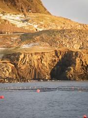 Columnar Basalt Formations in Kúlugjógv by Froðba, Suduroy, Faroe Islands (Eileen Sandá) Tags: ocean sea seascape nature landscape islands december formation fjord 2009 faroeislands basalt faroe northatlantic columnar føroyar columnarbasalt buoyant suðuroy foroyar stabbagrót basaltformations suduroy worldtrekker froðba frodba trongisvágsfjørður trongisvagsfjordur eileensandá kúlugjógv viftan
