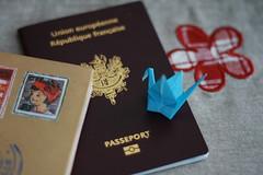 4/365 (-sunnydust-) Tags: travel flower 50mm swan origami bokeh 365 passeport project365 bokehwhore