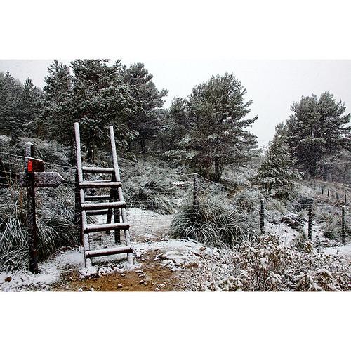 Font des Nogeur, Serra de Tramuntana, Mallorca