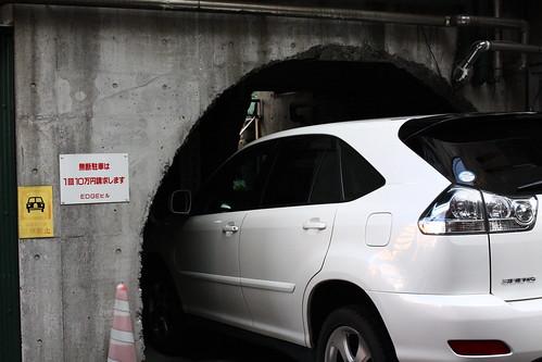 ワイルドな駐車場 wild parking space
