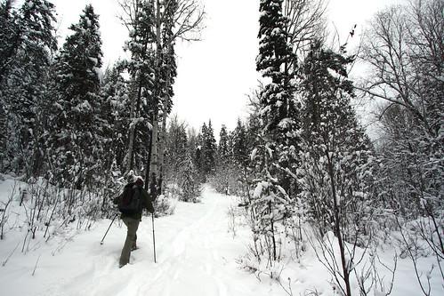 Snowshoeing @ Telemark