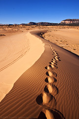 Footprints in the sand (I walk alone) (dwinning) Tags: park winter shadow usa southwest nature america walking print utah us sand desert state walk dunes dune tracks parks footprints human american area recreation arid coralpinksanddunes outpost stride ohv bestofmywinners blinksuperstars