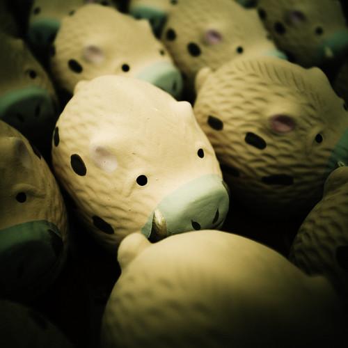 10711 : boar saced lot