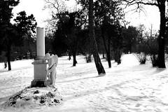 Mozart Grab (montnoirat) Tags: vienna wien leica blackandwhite bw friedhof film ex monochrome grave st 35mm blackwhite dc interestingness nikon f14 cemetary sigma delta super xp2 f 400 m8 marx plus sw hp5 p 100 pan kodachrome mm d200 monochrom agfa 35 schwarzweiss weiss mozart ilford fp4 m6 apx schwarz vienne x1 leicacamera georg m9 m7  x2 30mm friedhofstmarx hsm be i mozartgrab schwarzenberger leicam9 pureblackandwhite georgschwarzenberger leicakamera  leicam9monochrom leicam9monochrome