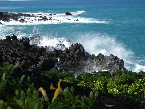 Waikoloa Shore