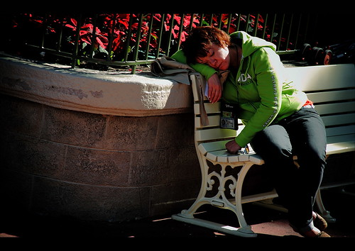 Disney's Human Element - A Thousand Ways To Catch A Nap (by Scott Smith (SRisonS))