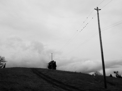 Telephone Line 02