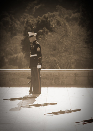 Soldier during 21 gun salute at a military funeral