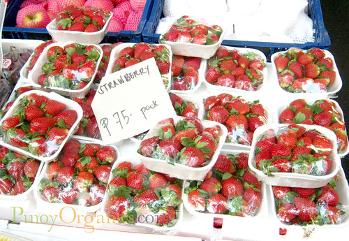 Salcedo Market-strawberries
