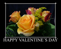Happy Valentines Day (madbesl) Tags: flower rose blume oa valentinstag mywinners platinumheartaward betterthangood goldstaraward valentinsday