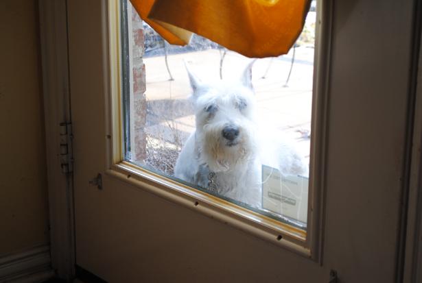 lola at door