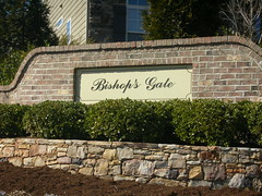 Cary NC Bishop's Gate homes for sale,Linda Lohman