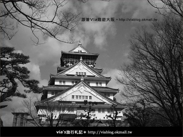 【via關西冬遊記】大阪城天守閣!冬季限定:梅園梅花盛開31
