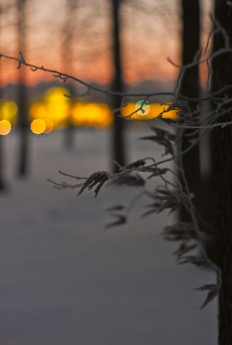Klaipeda Winter