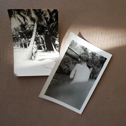 Photo Treasure in Ojai