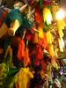Walking around Oaxaca - the large …