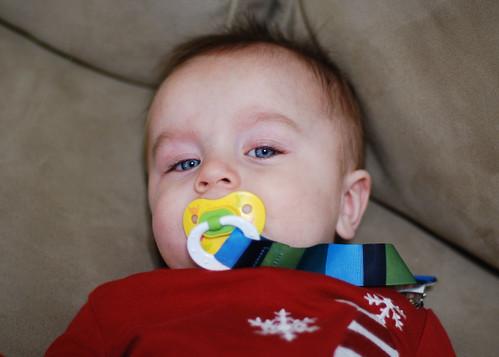 46/365 February 15, 2010