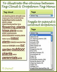 Screen shots of WordPress Tag Cloud and Tag Dropdown Widget