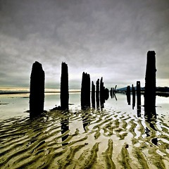 The Posts of Iona (Christopher J. Morley) Tags: beach water glass vancouver lunch sand bc silhouettes overcast richmond reflected iona pilings squarecrop contour ridges nicewalk neartheairport gettingoldtogether 100commentgroup artofimages bestcapturesaoi elitegalleryaoi 3alternatetitlesabove whodoesntlike silhouettepiles