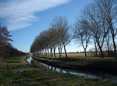 The Netherlands 017