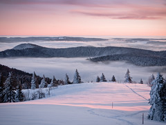 Above the Clouds (andywon) Tags: winter sky sun mist snow mountains nature fog clouds forest sunrise germany landscape deutschland hills inversion schwarzwald blackforest firs badenwrttemberg kandel