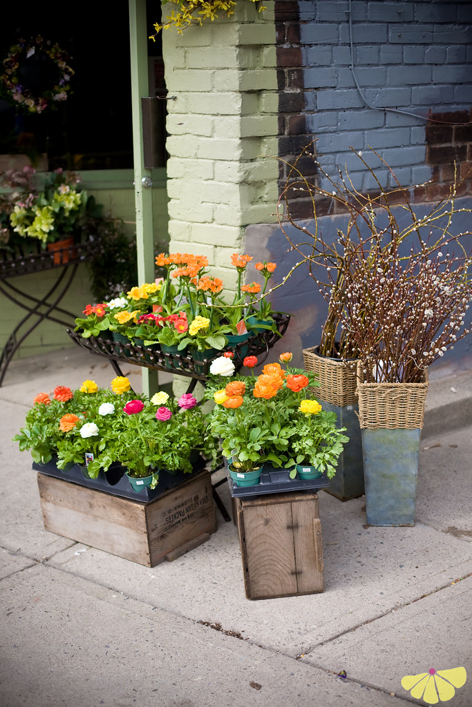 floral_shop_arrangement_toronto-1