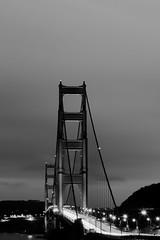 To The Sky (Jeremy Brooks) Tags: bw blackwhite blackandwhite bridge california goldengate goldengatebridge longexposure night nik sanfrancisco sanfranciscocounty silverefexpro usa millvalley ca unitedstates blogged fav10