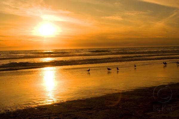 sunset Medley