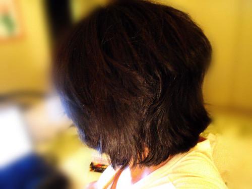 2010_04010018