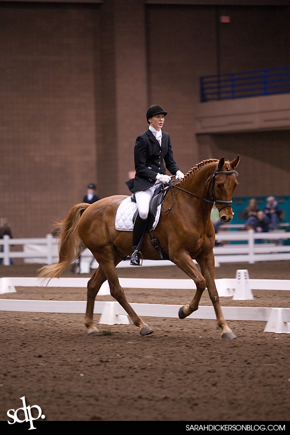 KCDS March Dressage Competition Kansas City, Hale Arena