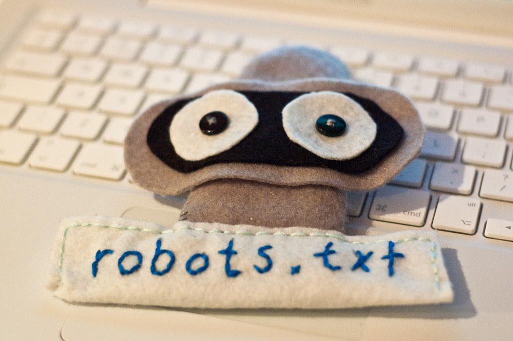 robots.txt felt robot