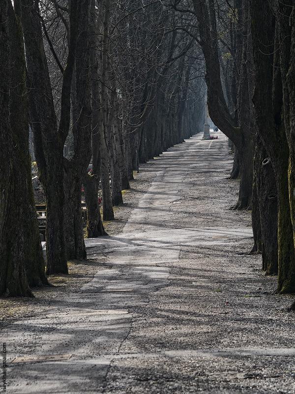 Mirogoj Cemetery. Zagreb. Croatia
