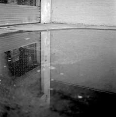 (andre dos santos) Tags: nyc newyorkcity blackandwhite newyork 120 6x6 tlr film rollei rolleiflex mediumformat square lens reflex harlem manhattan twin retro 80s squareformat medium format 80 schneider sugarhill twinlensreflex kreuznach xenar f35 75mm mxevs relflex rolleiretro80s rolleiretro80 mxevz
