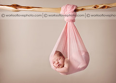 my wupen stick (drmolly1) Tags: baby newborn nikond700 worksoflovephotography branchshot wupenstick