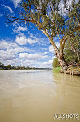 Rope Swing - Morgan, SA (Allshots Imaging) Tags: blue sky cloud water clouds canon river eos amazing fantastic perfect view angle south awesome wide australia rope swing morgan murray ultra 1022mm 1022 riverland 40d eos40d