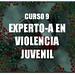 Curso Experto Violencia Juvenil