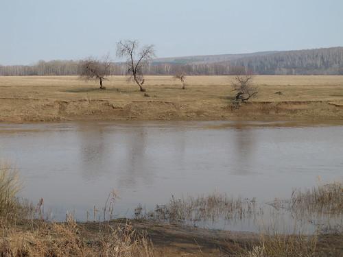 Река Дёма около Бочкаревки