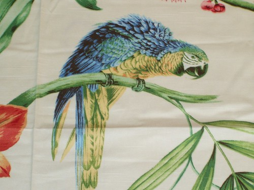 Tropical parrot fabric