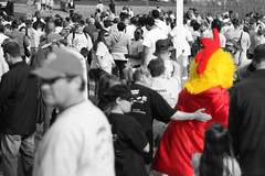 Lost (AgentThirteen) Tags: chicken crowd mascot chickensuit